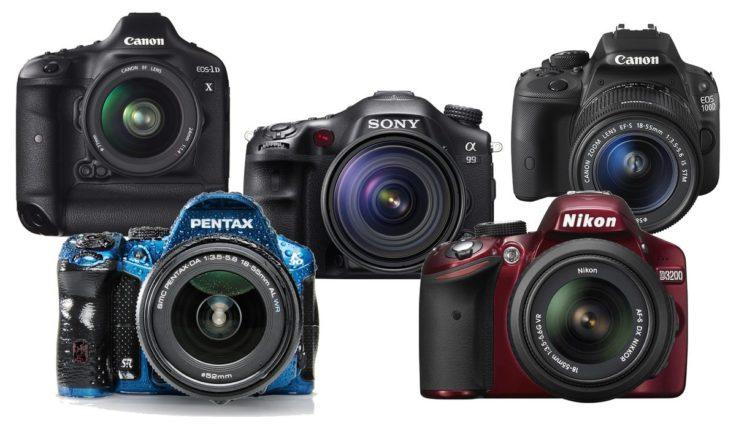 Bridge Camera Advantages and Disadvantages