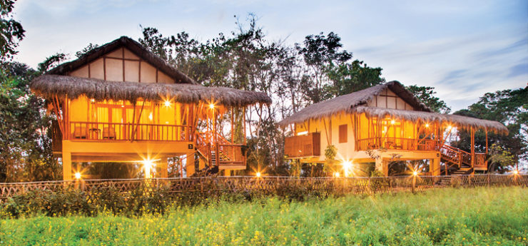 Kaziranga Resort, Assam ( Best Tiger Safari Resort in India)